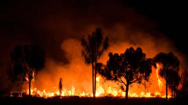 2019 Adalah Tahun Terpanas dan terberat dalam Sejarah Australia