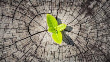 Menghadapi Perubahan di New Normal dengan Resiliensi